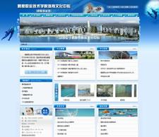 网站案例-鹤壁职业技术学院体育文化中心